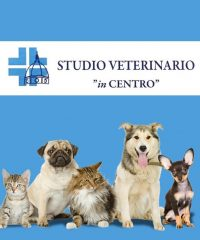 STUDIO VETERINARIO IN CENTRO